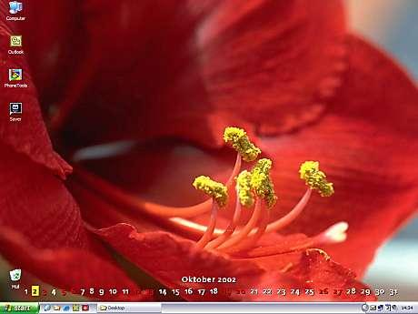DTgrafic FlowerPower 2.6.3 Screenshot